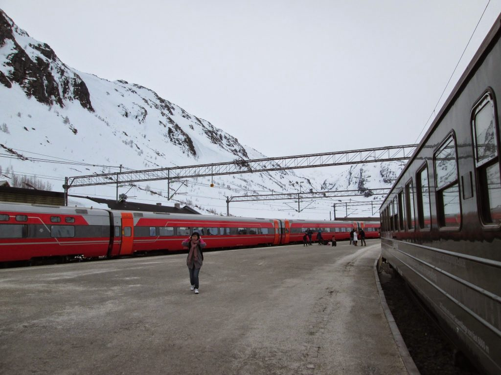 The World's Most Beautiful Train Ride Norway in a Nutshell