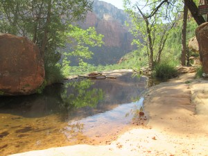 5 Unusual Things to Do Emerald Pools Zion National Park