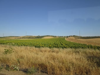 Step by Step Guide for Getting Around Southern Spain Without a Car