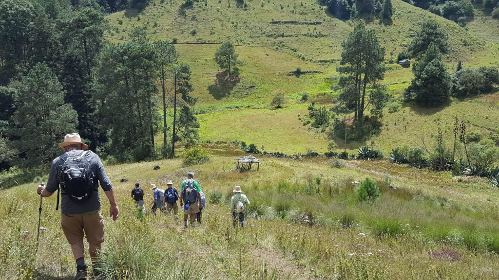 Hiking Sierra Norte Oaxaca Pueblos Mancomunados