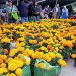 How to Enjoy Oaxaca Day of the Dead