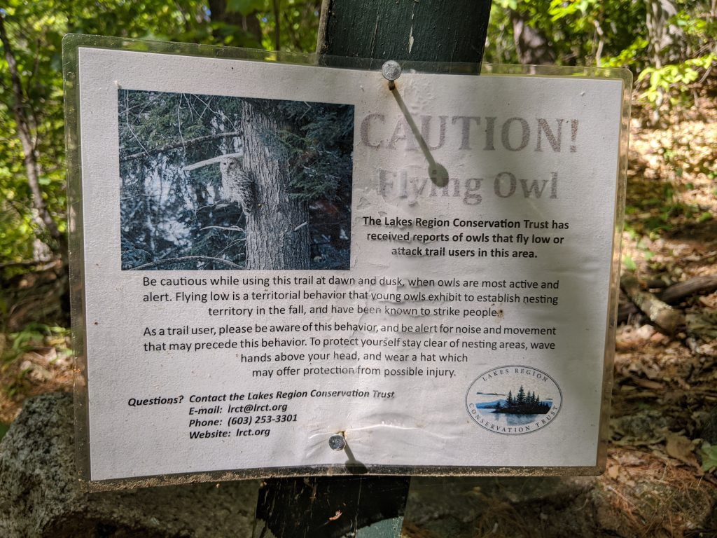 attack owl sign