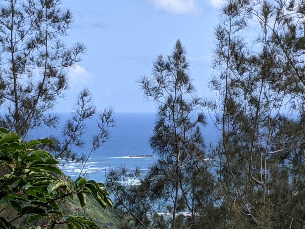 pacific views