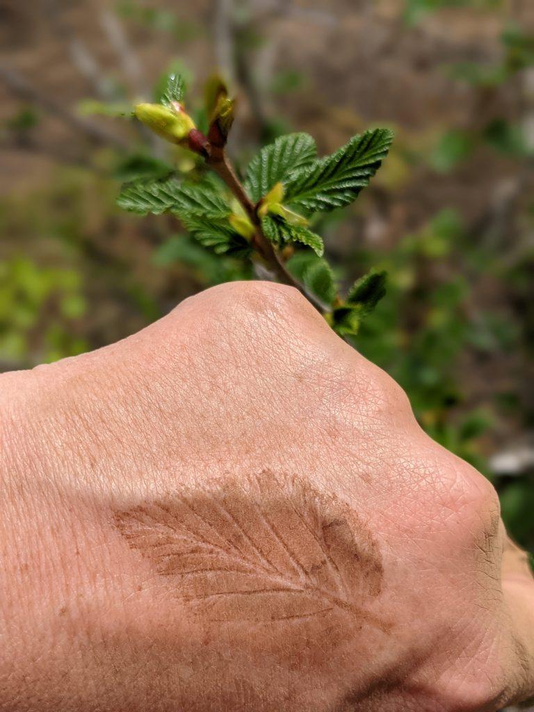 nature's tattoo