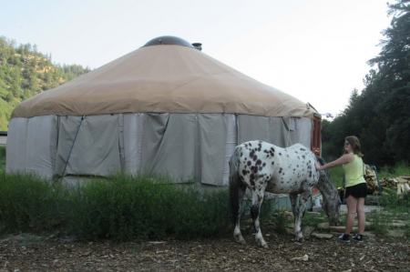 Stay in a Yurt Near Mesa Verde National Park Mancos